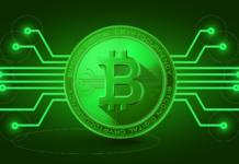 Green Cryptocurrencies